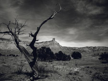 Alexandra Overby  - Ghost Ranch, NM
