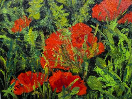 Joan Bell  - Poppies